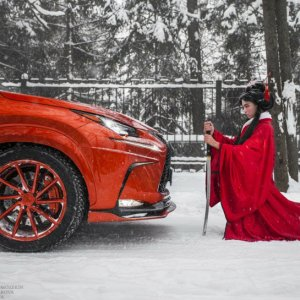 lexus nx 300h pheonix tuned by amgar american garage Side